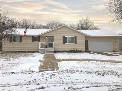Canton Single Family Home For Sale: 1119 E Elder St