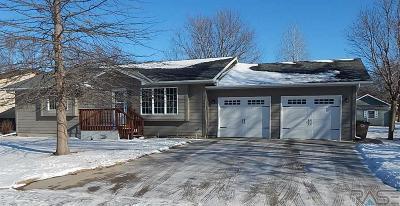 Canton Single Family Home Active-New: 206 N Bridge Ave