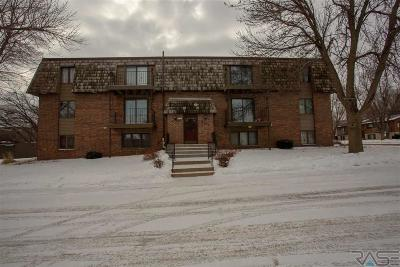 Sioux Falls Condo/Townhouse For Sale: 3704 S Terry Ave #202