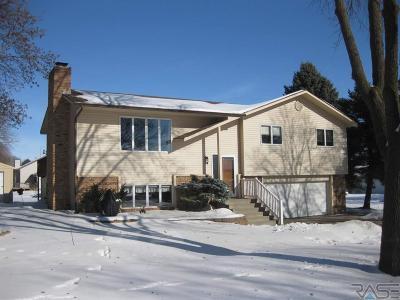 Dell Rapids Single Family Home For Sale: 904 E 11th St