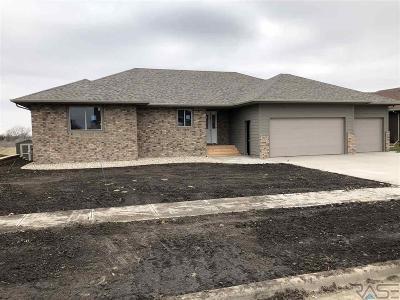 Brandon Single Family Home For Sale: 2805 E Daybreak Cir
