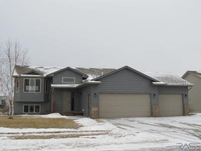 Sioux Falls Single Family Home For Sale: 5200 S Culbert Ave