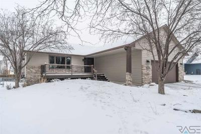 Sioux Falls Single Family Home For Sale: 4604 S Kyle Ave