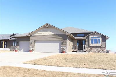 Sioux Falls Single Family Home For Sale: 3604 S Faith Ave