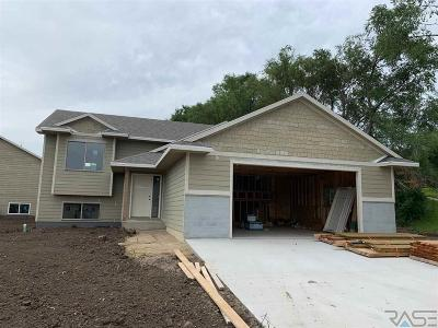 Sioux Falls Single Family Home For Sale: 1601 E Tracy Ln