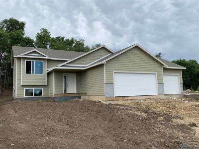 Sioux Falls Single Family Home For Sale: 1605 E Tracy Ln