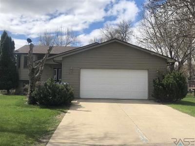 Sioux Falls Single Family Home For Sale: 6013 W 43rd St