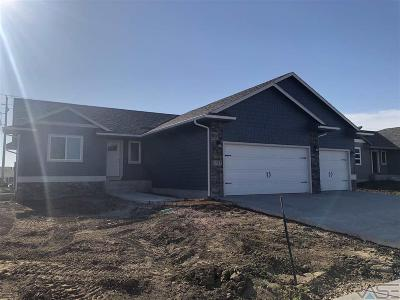 Sioux Falls SD Single Family Home Active-New: $254,800