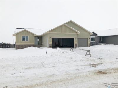 Sioux Falls SD Single Family Home Active-New: $297,800