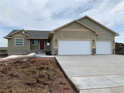Sioux Falls SD Single Family Home Active-New: $262,800