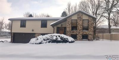 Sioux Falls SD Single Family Home Active-New: $224,900