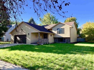 Brandon Single Family Home For Sale: 413 N Needles Dr