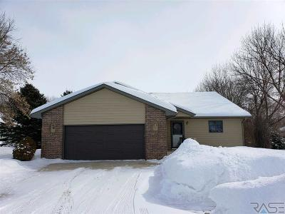 Dell Rapids Single Family Home For Sale: 1204 Clark Ave
