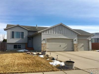 Sioux Falls Single Family Home For Sale: 4829 S Wilson Ave