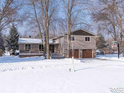 Sioux Falls Single Family Home For Sale: 505 N Appaloosa Trl