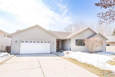 Sioux Falls Single Family Home Active-New: 825 N Savannah Dr