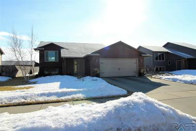 Sioux Falls Single Family Home For Sale: 3124 S Triple Play Ave
