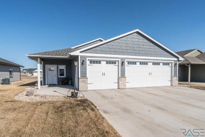 Harrisburg Single Family Home For Sale: 132 Devitt Dr