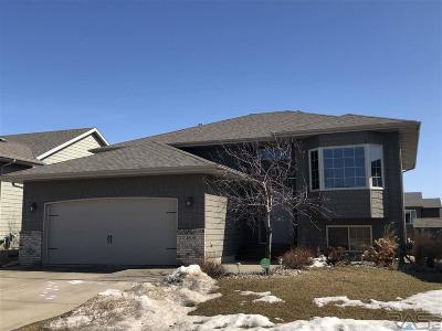 Sioux Falls Single Family Home Active-New: 4608 S Vista Park Ave