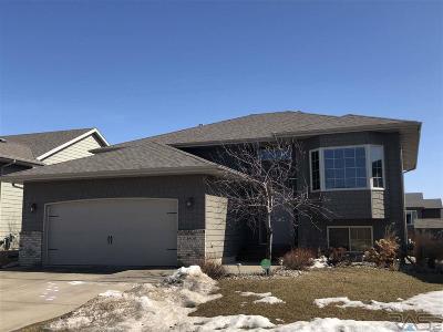 Single Family Home Active-New: 4608 S Vista Park Ave