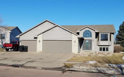 Sioux Falls Single Family Home For Sale: 1920 S Grinnell Ave