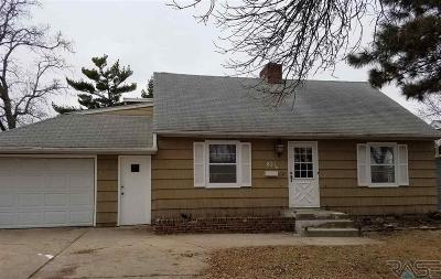 Sioux Falls Single Family Home For Sale: 821 S Willow Ave