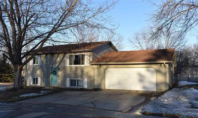 Sioux Falls Single Family Home For Sale: 1000 S Gordon Dr