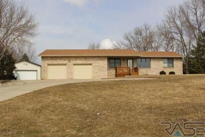 Single Family Home For Sale: 46422 38 Hwy