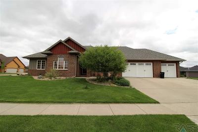 Brandon Single Family Home For Sale: 2004 W River Bend St