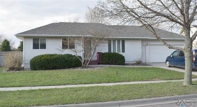 Brandon Single Family Home Active - Contingent Misc: 105 W Birchwood Dr