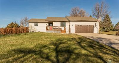 Dell Rapids Single Family Home For Sale: 201 Prospect Ave