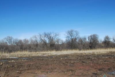 Sioux Falls Residential Lots & Land For Sale: 1005 N Mable Cir