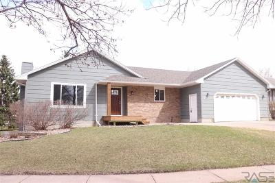 Sioux Falls Single Family Home For Sale: 4600 S Shields Ave