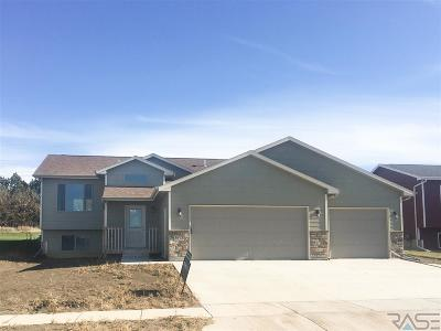 Sioux Falls Single Family Home For Sale: 3912 S Pisidian Ave