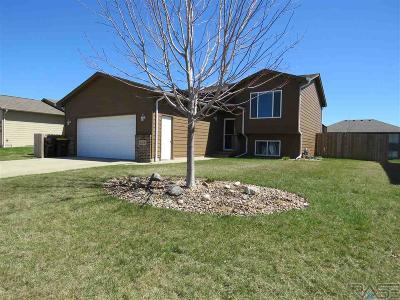 Sioux Falls Single Family Home For Sale: 4008 S Linedrive Ave
