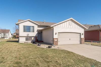 Sioux Falls, Harrisburg, Brandon, Tea, Worthington, Lennox, Canton, Hartford, Crooks, Renner, Humboldt Single Family Home For Sale: 4708 Vista Park Ave