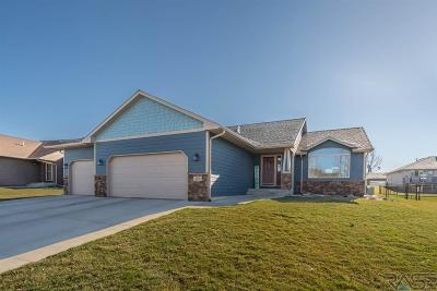 Sioux Falls SD Single Family Home Active-New: $349,900