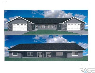 Sioux Falls SD Single Family Home Active-New: $325,000