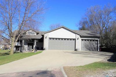 Parker Single Family Home Active-New: 380 S Oak Ave