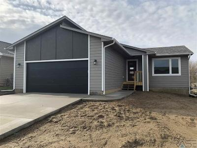 Sioux Falls Single Family Home For Sale: 6541 W Amber St