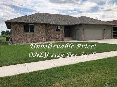 Brandon Single Family Home For Sale: 2805 E Daybreak Cir