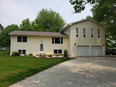 Dell Rapids Single Family Home For Sale: 1200 Ladelle Ave