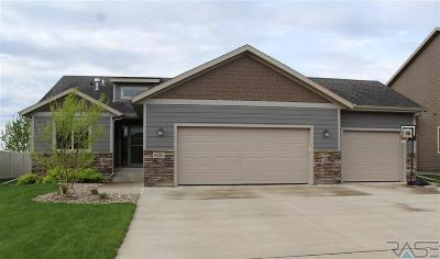 Sioux Falls Single Family Home For Sale: 6729 E 44th St
