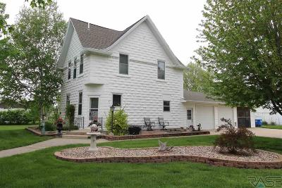 Canton Single Family Home For Sale: 802 W 3rd St