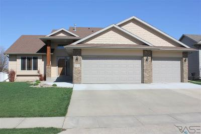 Sioux Falls Single Family Home Active-New: 2900 S Princeton Ave
