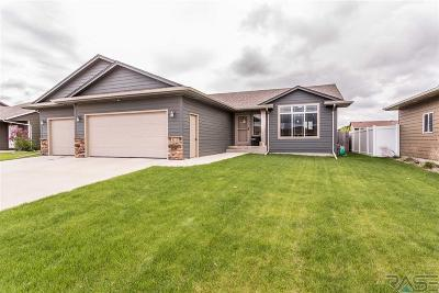 Sioux Falls Single Family Home Active-New: 3113 S Sandlot Ave