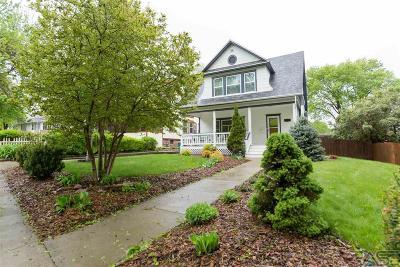 Sioux Falls Single Family Home For Sale: 919 S Dakota Ave