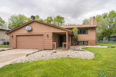 Sioux Falls Single Family Home Active-New: 4301 S Southeastern Ave