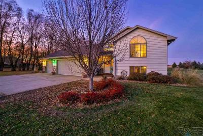 Tea Single Family Home Active-New: 46940 Blue Spruce St