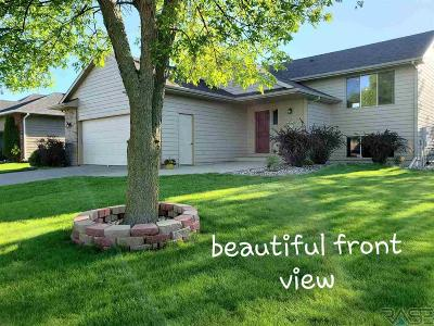 Sioux Falls Single Family Home For Sale: 7005 S Hughes Ave